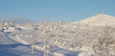 CROSS-COUNTRY SKI & NORTHERN LIGHTS HOLIDAY IN LAPLAND